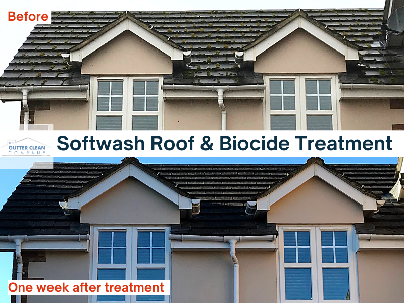 Soft wash roof and Biocide Treatment